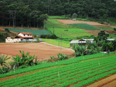 """Christino comemora a aprovação do FIAGRO: """"Revoluciona a forma de financiamento da produção agroindustrial"""