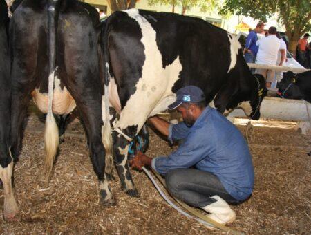 Com mais uma atuação importante de Christino, produtores de leite do Estado do Rio terão linha de crédito para enfrentar a pandemia