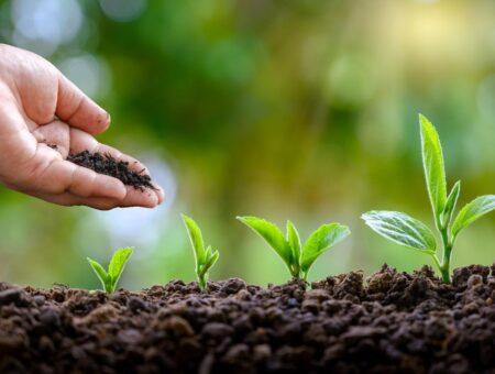 De coautoria de Christino Áureo, Projeto de Lei cria o Programa de Desenvolvimento da Indústria de Fertilizantes